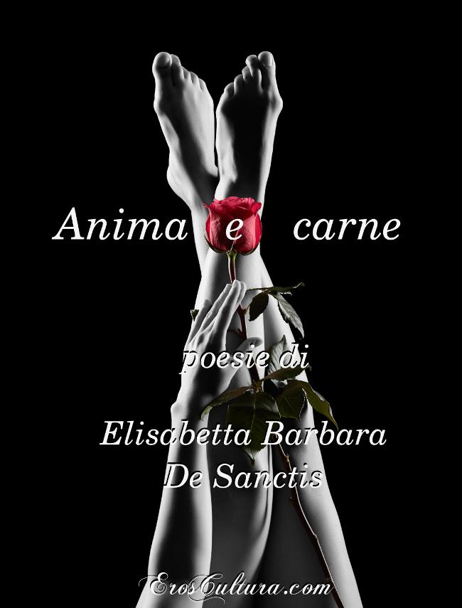 Anima e carne cover - i miei libri